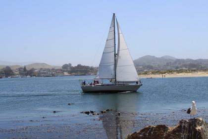 SLO_Sailing