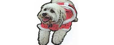 Santa's Doggie Parade